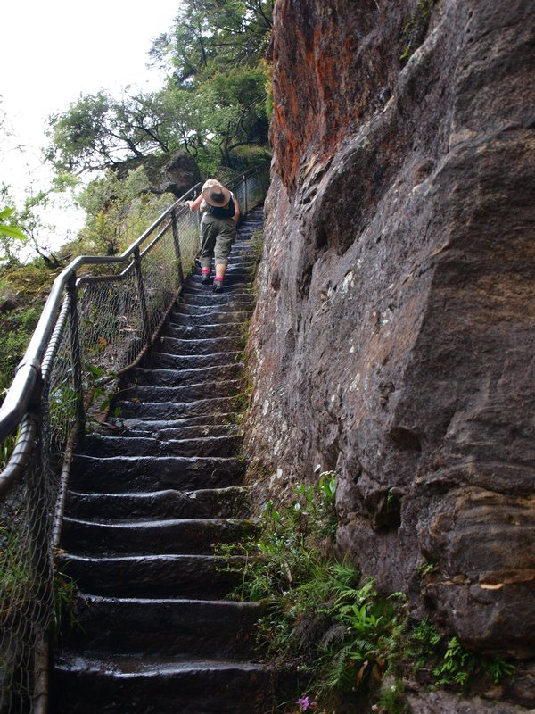 giant-stairway-blue-mountains-hike