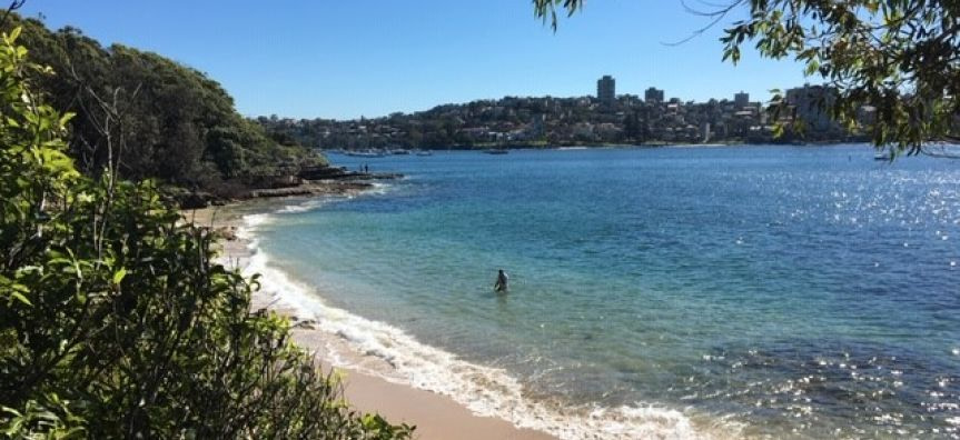 manly-to-spit-walk-sydney-tourist-attractions