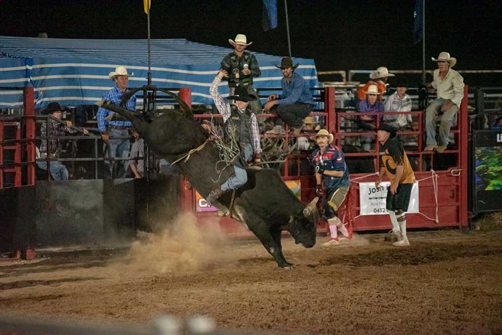 black-opal-bull-and-bronc-ride