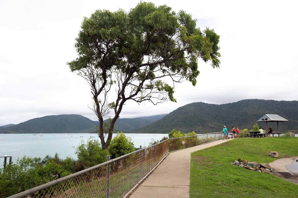 conway-national-park-airlie-beach