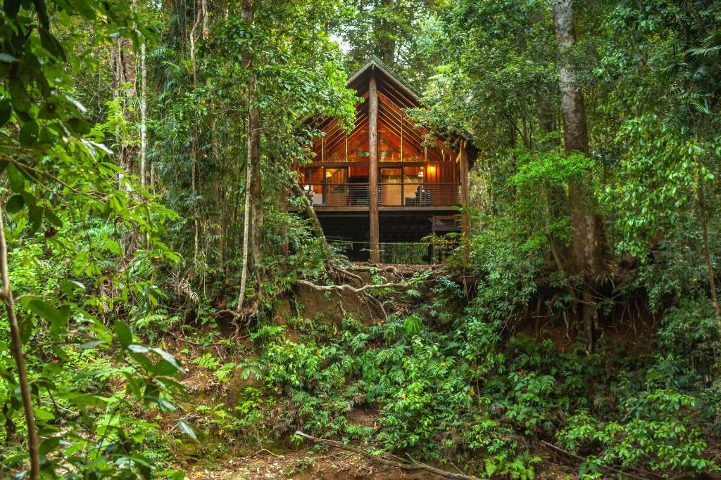 the-canopy-atherton-tablelands-accommodation