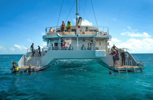 Great-barrier-reef-day-trip