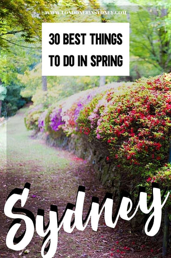 things-do-to-in-sydney-in-spring