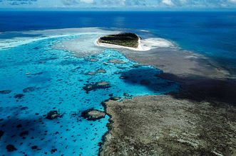 lady-musgrave-island-1