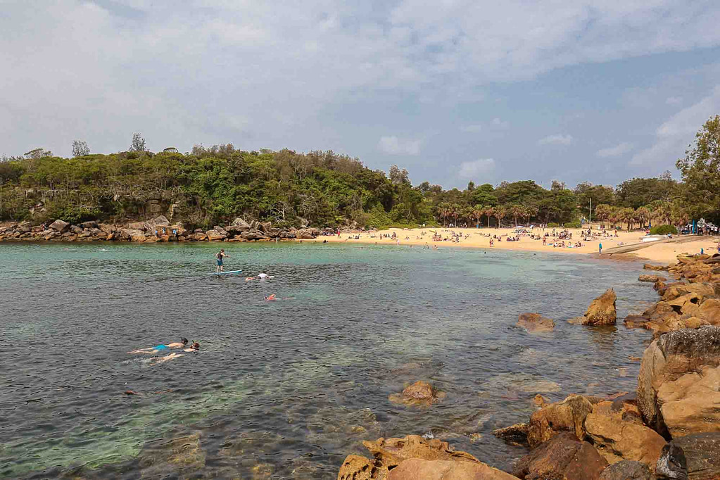 snorkelling-shelly-beach-manly